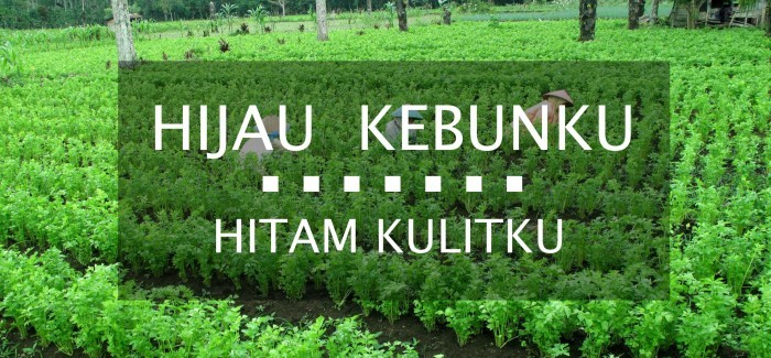 Manfaat Pertanian Organik Bagi Petani 1