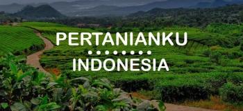 pengertian pertanian