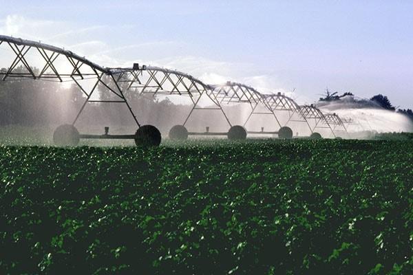 Irrigation machine-min