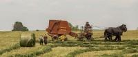 9 Peluang Usaha Pertanian Modern Yang Menjanjikan 3