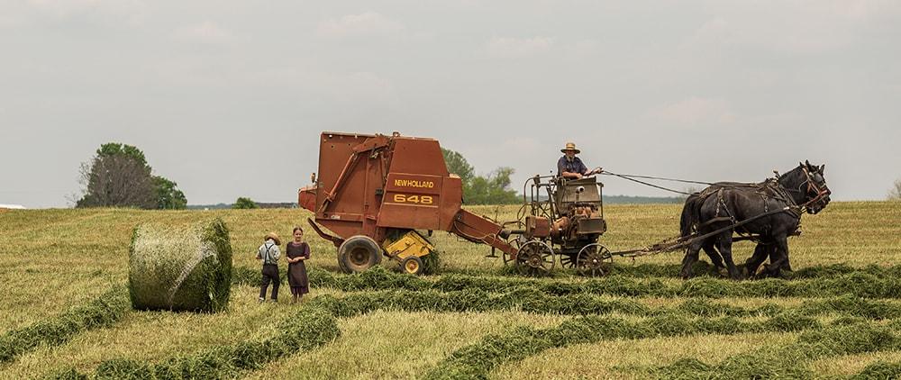 orang-bidang-kerja-pertanian-indonesia-min