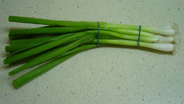 contoh tanaman hidroponik daun bawang