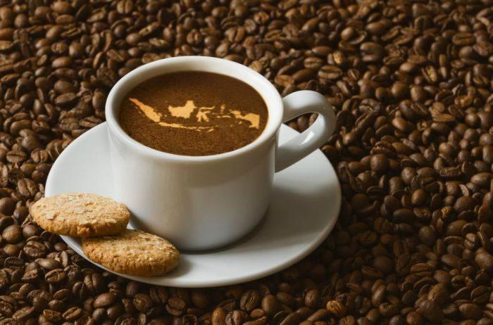 Jenis Jenis Kopi yang Sering di Gunakan untuk Memulai Bisnis Kafe 1