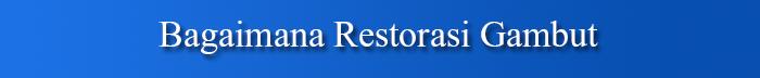 Restorasi Lahan Gambut, Langkah Penting Selamatkan Masyarakat & Lingkungan 7