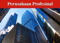 Ciri Perusahaan Profesional